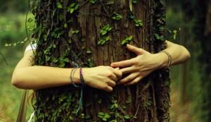 hippie-tree-hugger-header-665x385